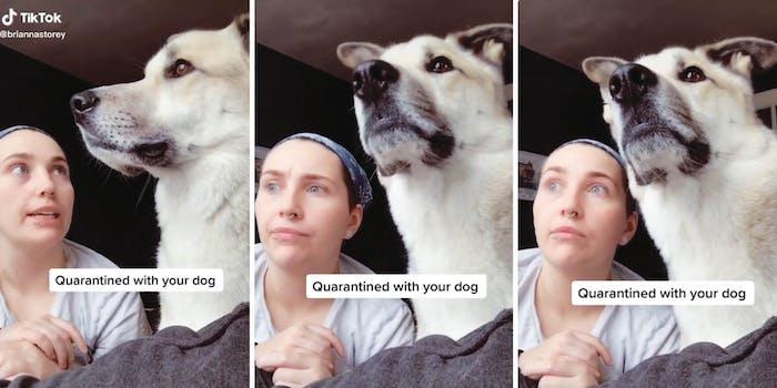 learning to dog tiktok
