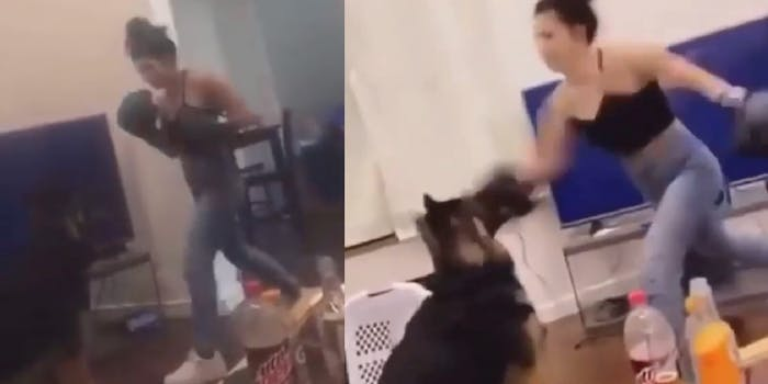 London Miner is seen punching her dog in two screenshots
