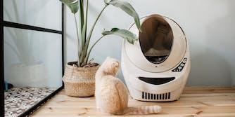 Litter-Robot review