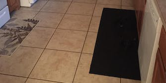 black dog on black mat