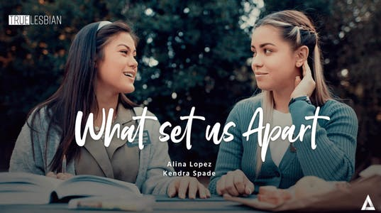softcore lesbian porn movie poster for What Set Us Apart showing two young women talking