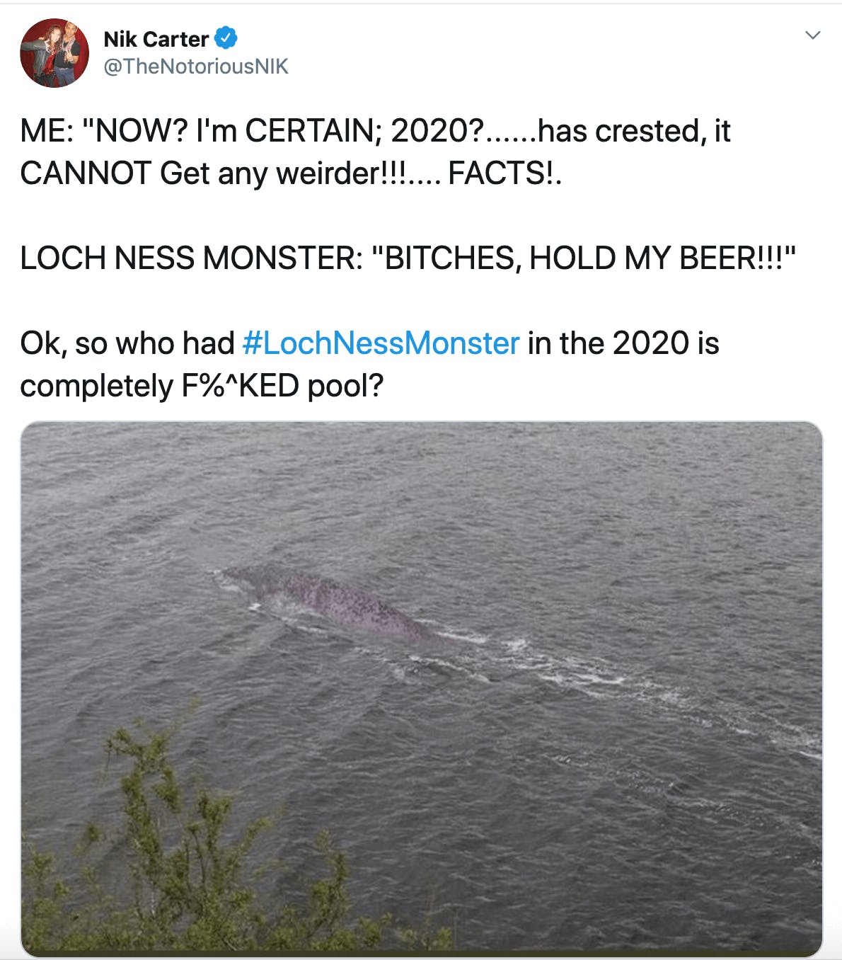 """ME: """"NOW? I'm CERTAIN; 2020?......has crested, it CANNOT Get any weirder!!!.... FACTS!.  LOCH NESS MONSTER: """"BITCHES, HOLD MY BEER!!!""""  Ok, so who had #LochNessMonster in the 2020 is completely F%^KED pool?"""