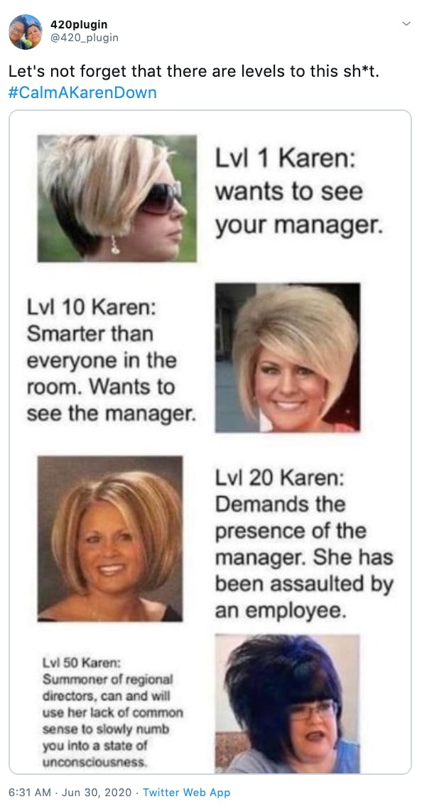 """Let's not forget that there are levels to this sh*t. #CalmAKarenDown"" Gif of women with Karen hair cuts at different ages assigning them levels from 1 to 50"