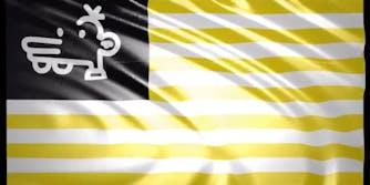 the-manny-flag-petition-gen-z-tiktok