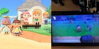 Animal Crossing Sex Toys