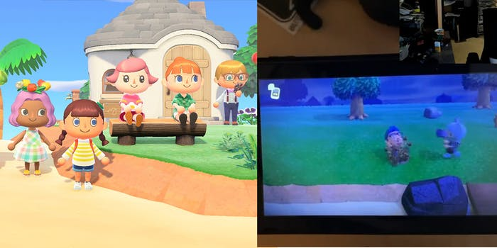 Animal Crossing Sex Toys