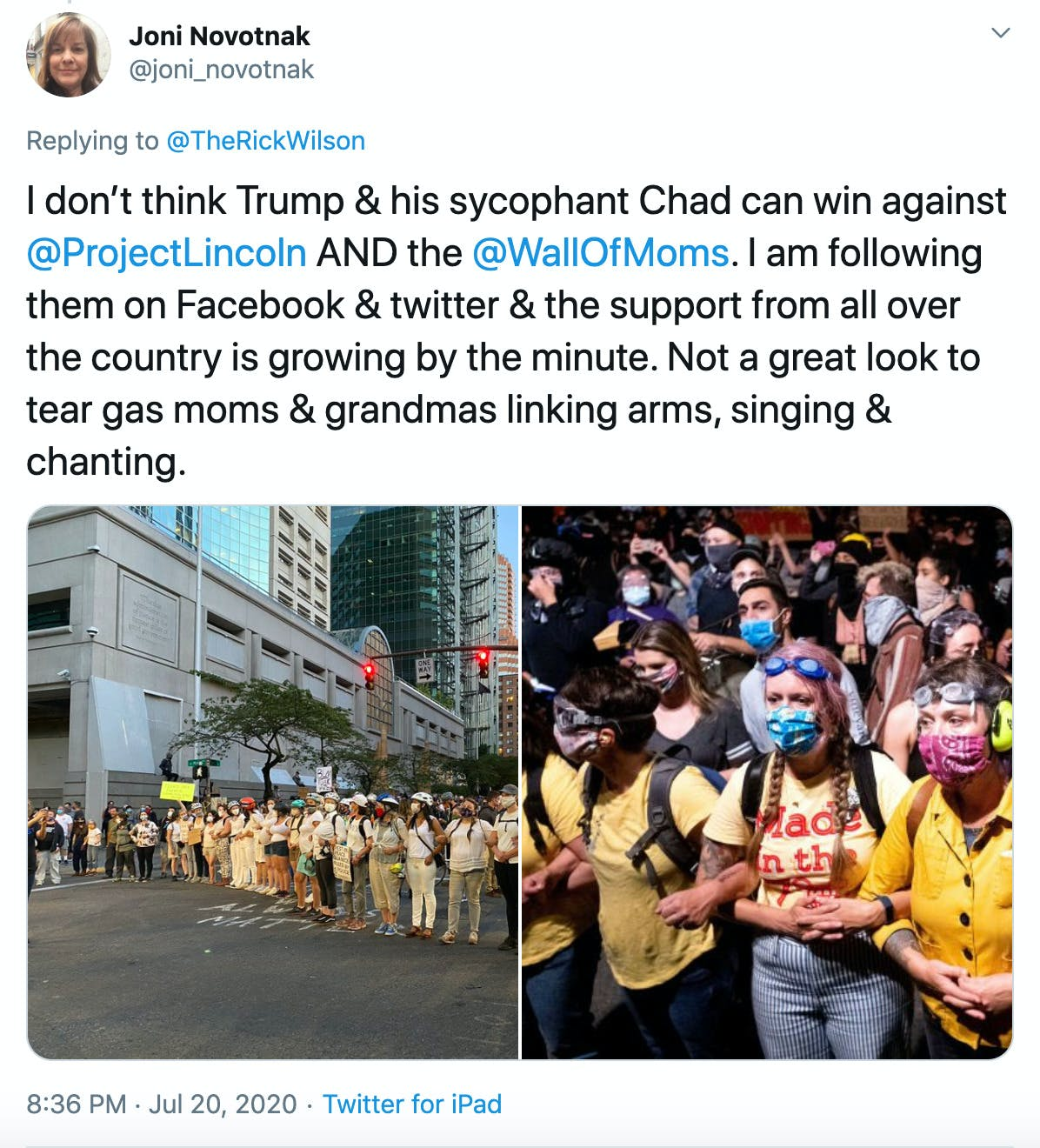 """""""I don't think Trump & his sycophant Chad can win against  @ProjectLincoln  AND the  @WallOfMoms . I am following them on Facebook & twitter & the support from all over the country is growing by the minute. Not a great look to tear gas moms & grandmas linking arms, singing & chanting."""" two photographs of the yellow clad protesters"""