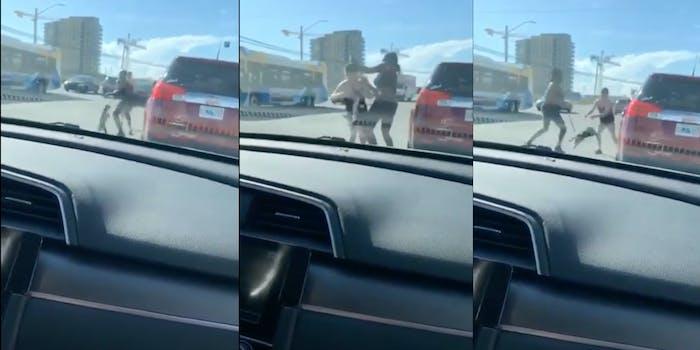 puppy weapon road rage