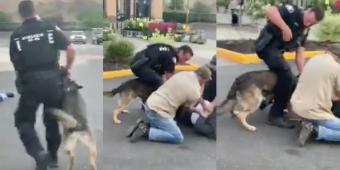 police dog bites man