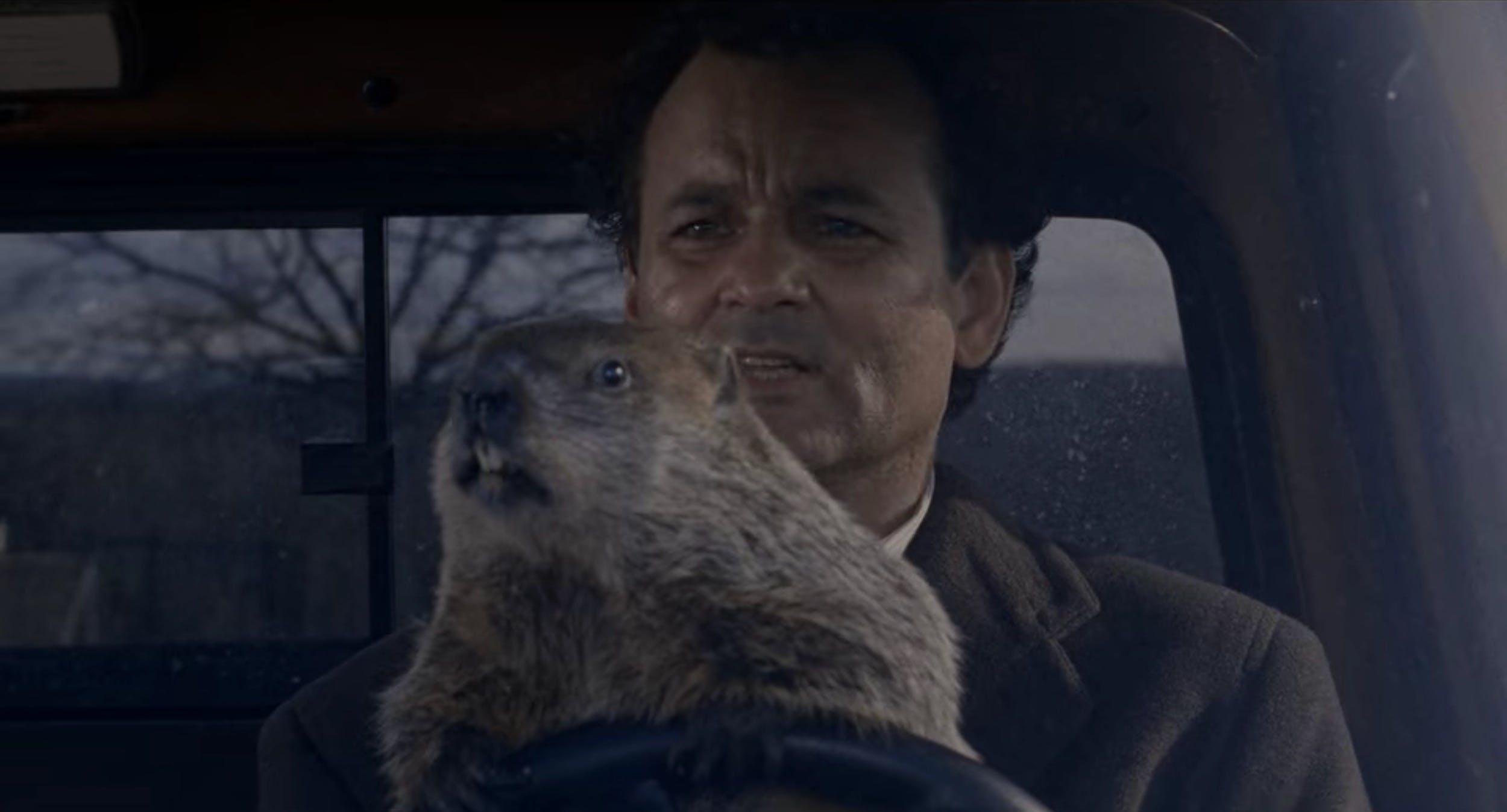 time loop groundhog day