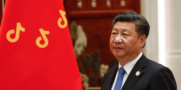Xi Jinping looks at Chinese flag with stars replaced by TikTok logos