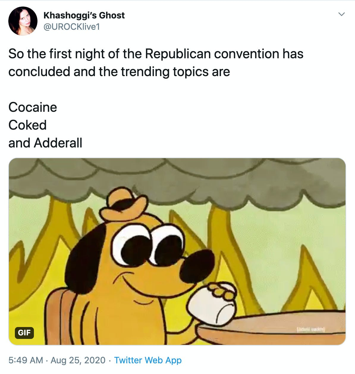 """So the first night of the Republican convention has concluded and the trending topics are  Cocaine Coked and Adderall"" meme of the dog drinking coffee in a burning house saying everything is fine"