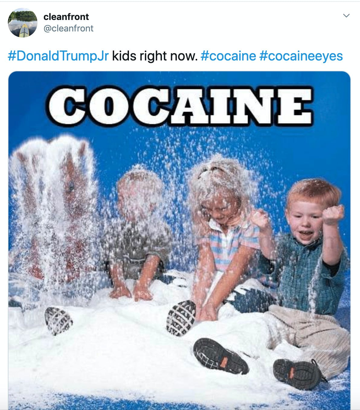"""#DonaldTrumpJr kids right now. #cocaine #cocaineeyes"" image of toddlers playing in a heap of white powder"