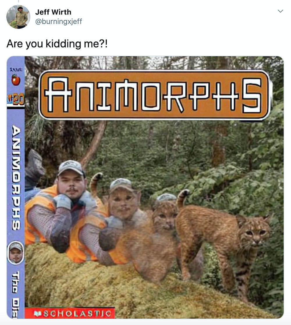 """Are you kidding me?!"" image of Sizemore turning into the bobcat photoshopped onto an Animorphs book cover"