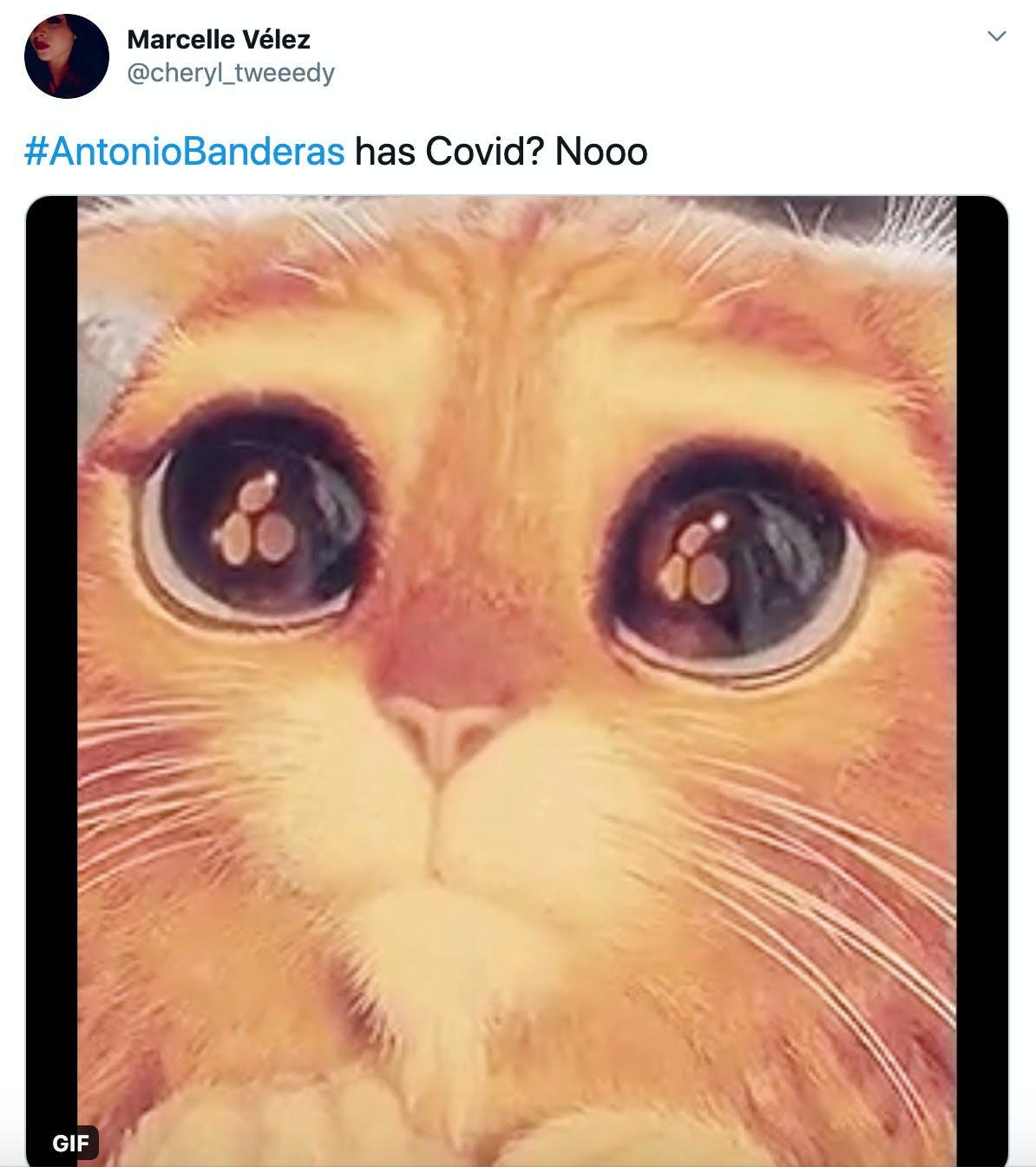 """#AntonioBanderas has Covid? Nooo"" gif of Puss in Boots from Shrek making big sad eyes"