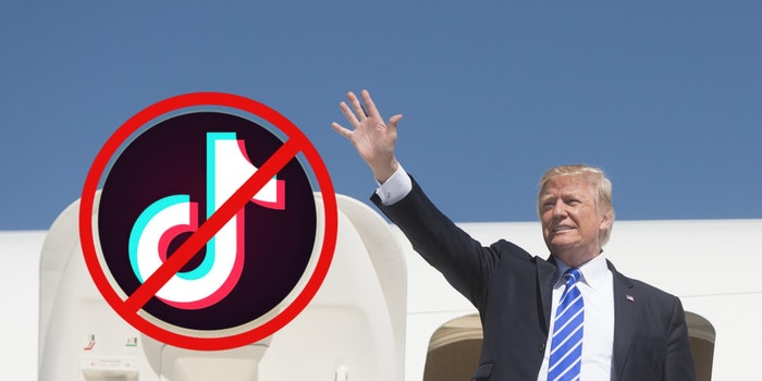 President Donald Trump next to the TikTok logo