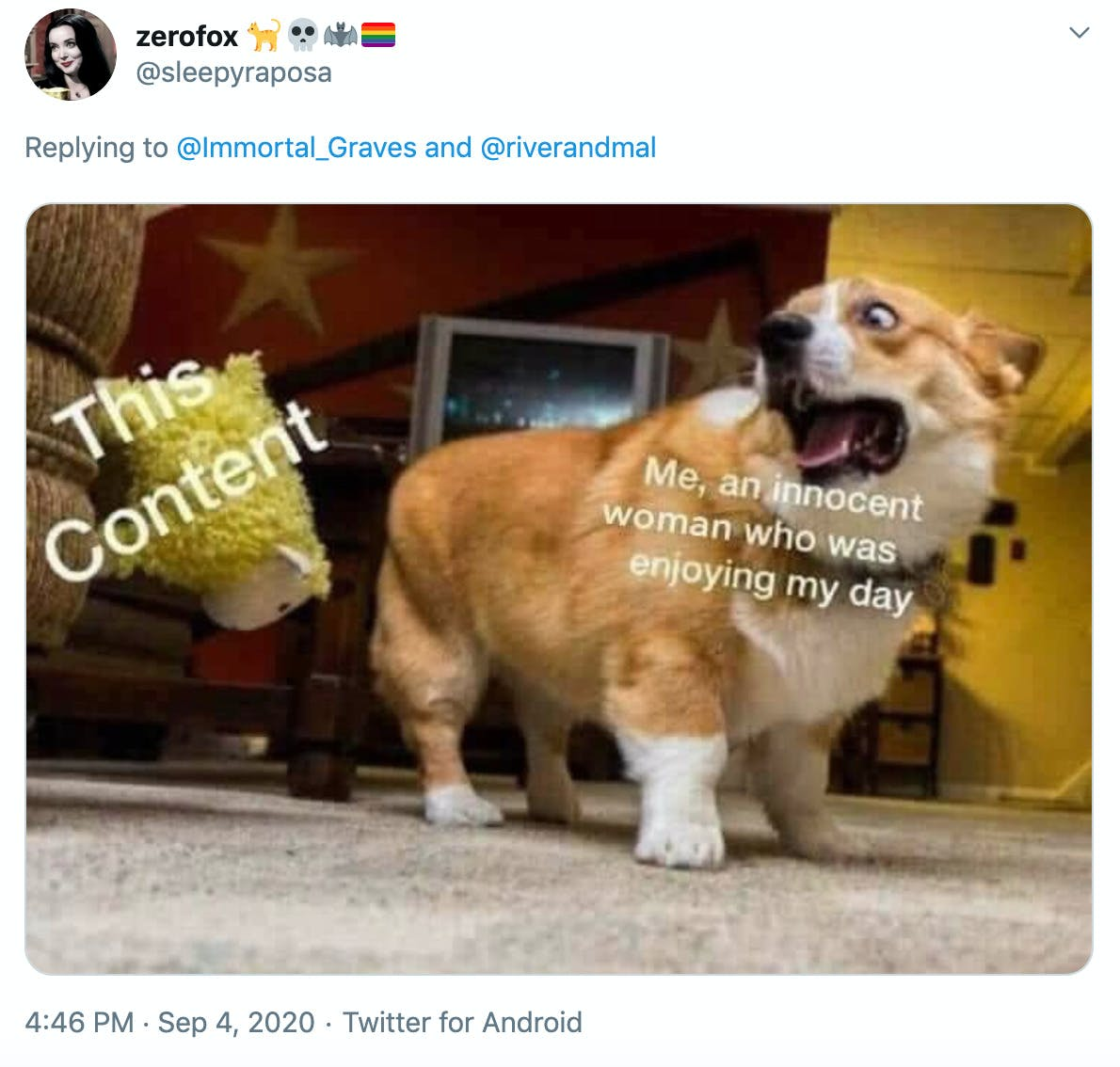 a picture of a corgi looking alarmed by a falling sheep toy with the caption  'me an innocent woman who was enjoying my day' over the corgi and 'this content' over the sheep