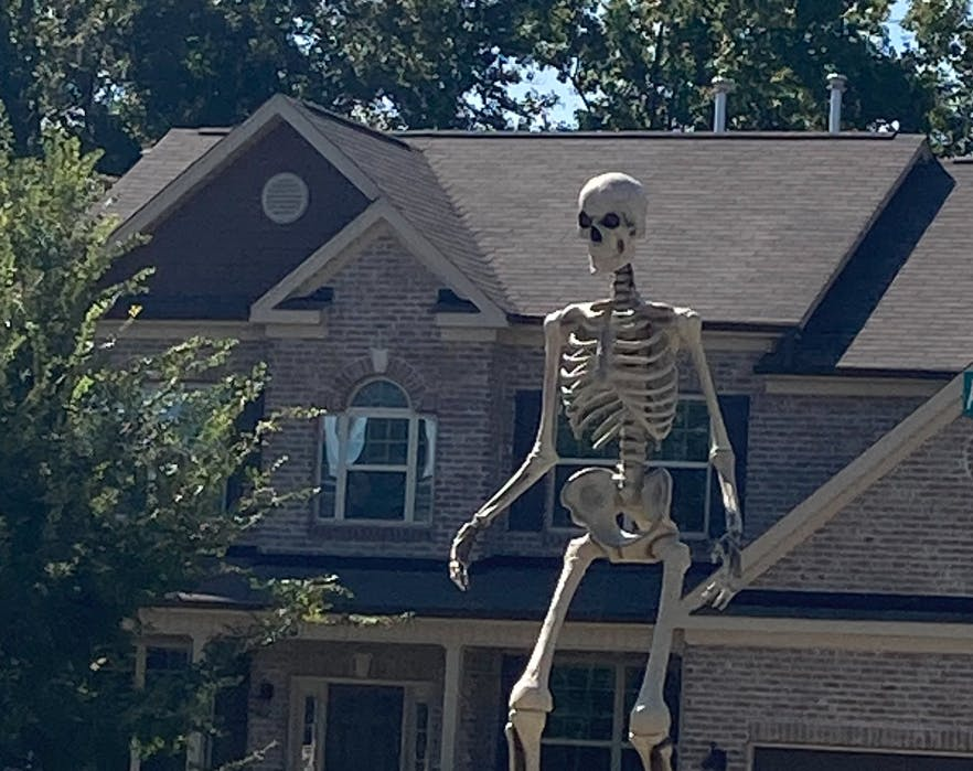 giant home depot skeleton