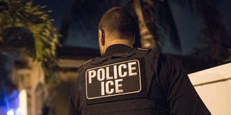 U.S. Immigration and Customs Enforcement (ICE) Officer