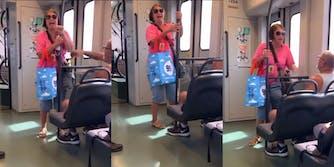 woman has racist meltdown on train