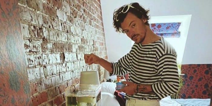 Harry Styles - fan visit