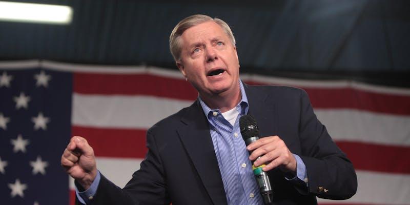 Lindsey Graham Wins South Carolina Senate Race