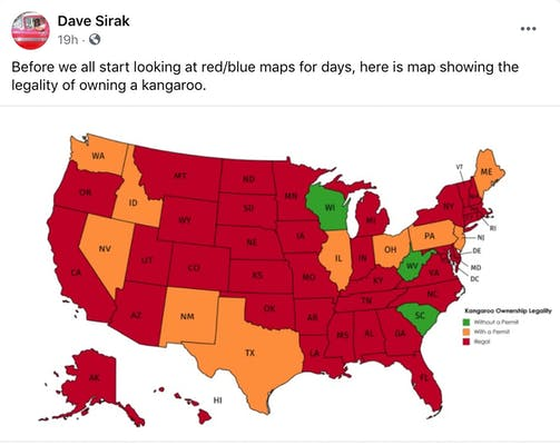 """""""Before we all start looking at red/blue maps for days, here is map showing the legality of owning a kangaroo."""" the electoral college map coloured in green, red and orange for the different levels of kangaroo owning legality"""