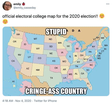 """""""official electoral college map for the 2020 election!! Smiling face"""" each state is a different pastel colour and the map is labelled """"stupid ass country"""""""