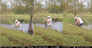 man saves dog gator florida daytona video