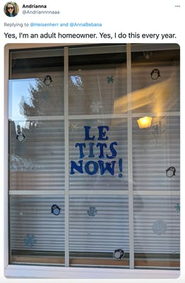 """Yes, I'm an adult homeowner. Yes, I do this every year."" photograph of a window with ""le tits now"" in the centre in blue decals"