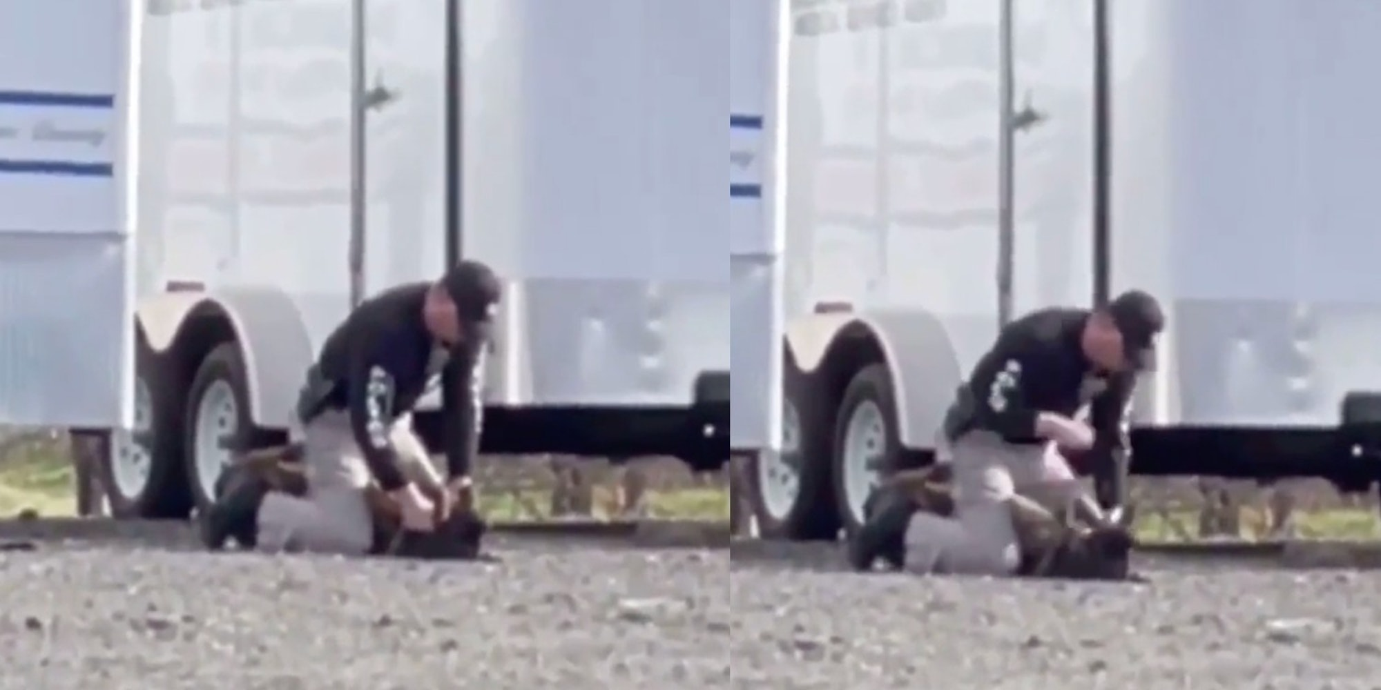 Video shows officer punching a K-9