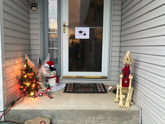 Frank the Gargoyle, the small Christmas tree now covered in multicoloured lights, the elf sitting on Frank's shoulder, a tilted placard where the image of Bruce Willis is hard to see and a plastic cat skeleton in a Christmas sweater