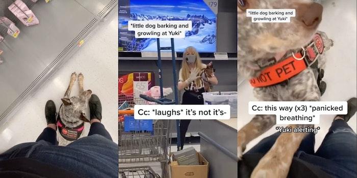 Walmart - service animal