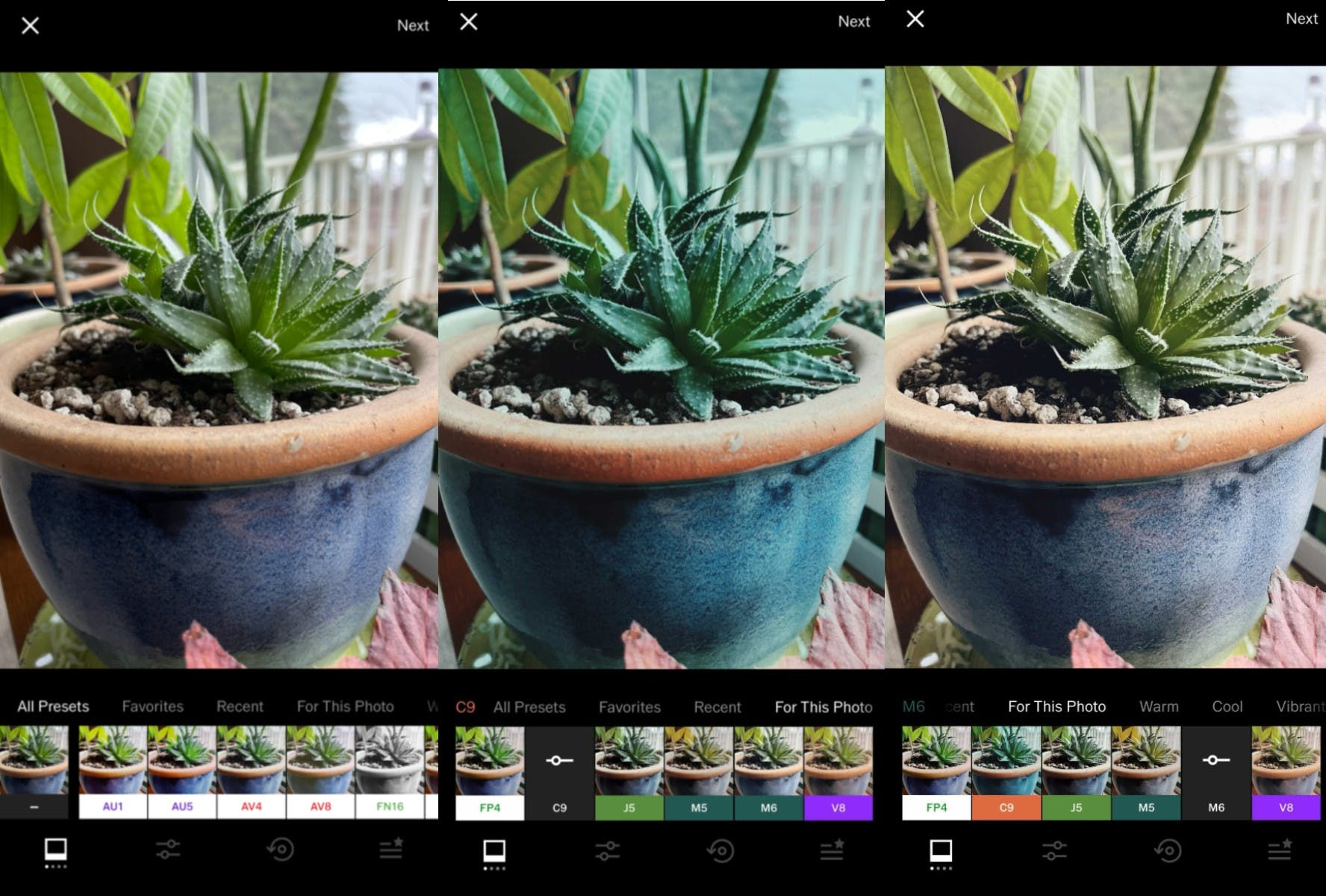 A plant photo being edited in VSCO