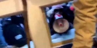 Bullhorn Lady Capitol Riots