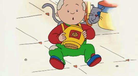 Photo of Caillou playing with his cat.