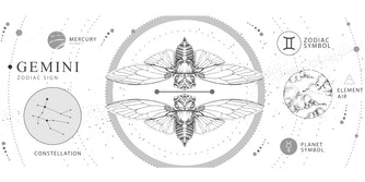 Gemini in astrology, the element, the symbol, and the constellation illustrated on a white background.