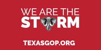 """We are the storm texasgop.org"" with the O in storm replaced with an elephant"