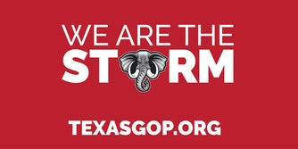 """""""We are the storm texasgop.org"""" with the O in storm replaced with an elephant"""