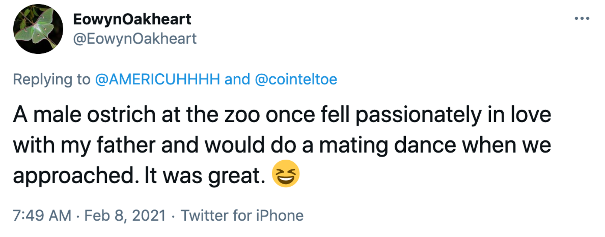 A male ostrich at the zoo once fell passionately in love with my father and would do a mating dance when we approached. It was great. Smiling face with open mouth and tightly-closed eyes