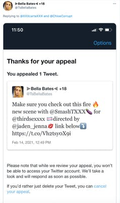 Screenshot featuring a tweet by Bella Bates advertising porn content and a message from Twitter acknowledging they're reviewing her ban appeal