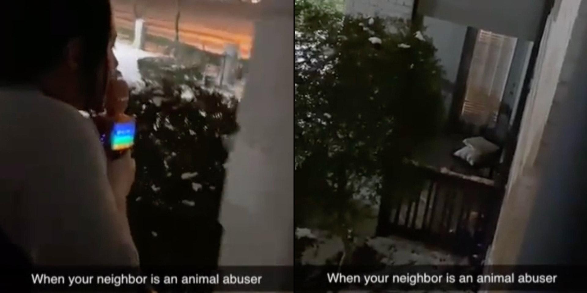 TikToker tells neighbor to bring her fucking dog inside during winter storm