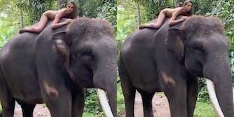 instagram-influencer-slammed-for-nude-photo-endangered-elephant