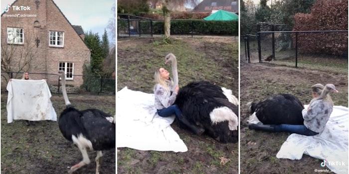 ostrich girl tiktok