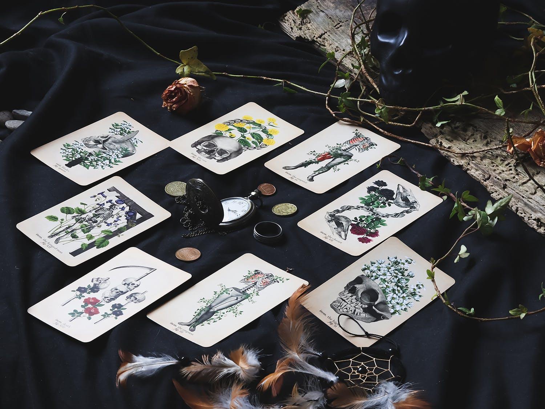 Tarot cards spread on black background with ceramic skull