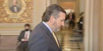 Sen. Ted Cruz (R-Tx.) and his haircut