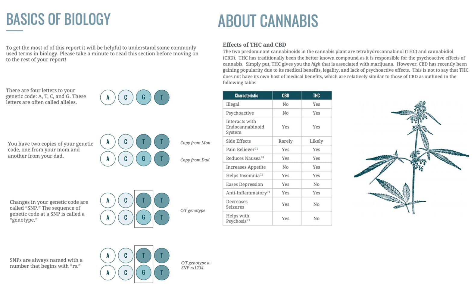 Dynamic DNA Laboratories' explanation of using and understanding pharmacogenetics as it relates to cannabis products.