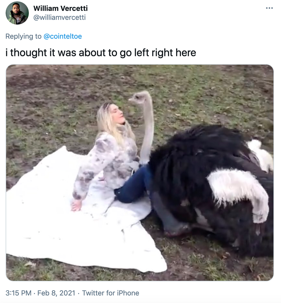 """i thought it was about to go left right here"" still from the video showing the ostrich settling between her legs"