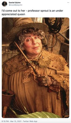 """""""I'd come out to her - professor sprout is an under appreciated queen"""" A white woman in brown witches garb, holding a wand and making a humorous face"""