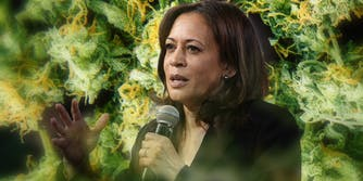 kamala harris with microphone in front of pot background